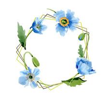 Blue Poppy Floral Botanical Flower. Watercolor Background Illustration Set. Frame Border Ornament Square.
