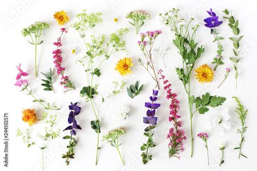 Fotografia Summer botanical pattern