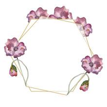 Purple Red Poppy Floral Botanical Flower. Watercolor Background Illustration Set. Frame Border Ornament Square.