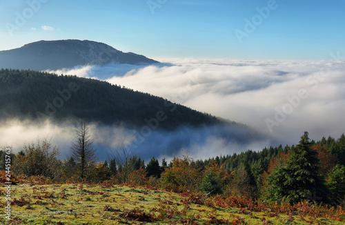 Fototapeten Wald Urkiola natural park landscape in Spain