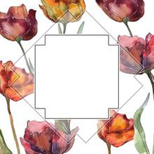 Red And Burgundy Floral Botanical Flower. Watercolor Background Illustration Set. Frame Border Ornament Square.