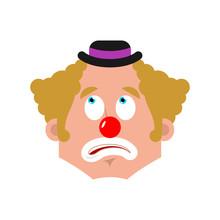Clown Bewildered Emotion Avata...