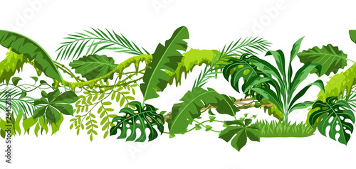 Fotografie, Obraz  Seamless pattern with jungle plants.