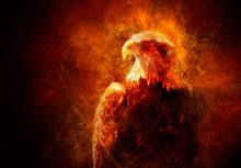 Illustration Of Fire Burning Eagle With Black Background
