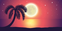 Romantic Night Full Moon By The Sea With Palm Tree Landscape Vector Illustration EPS10