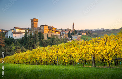 Photo  Levizzano Rangone with wineyards on the foreground