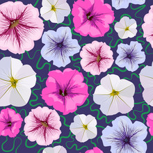Seamless Background From Petunia Flowers.  Floral Pattern.