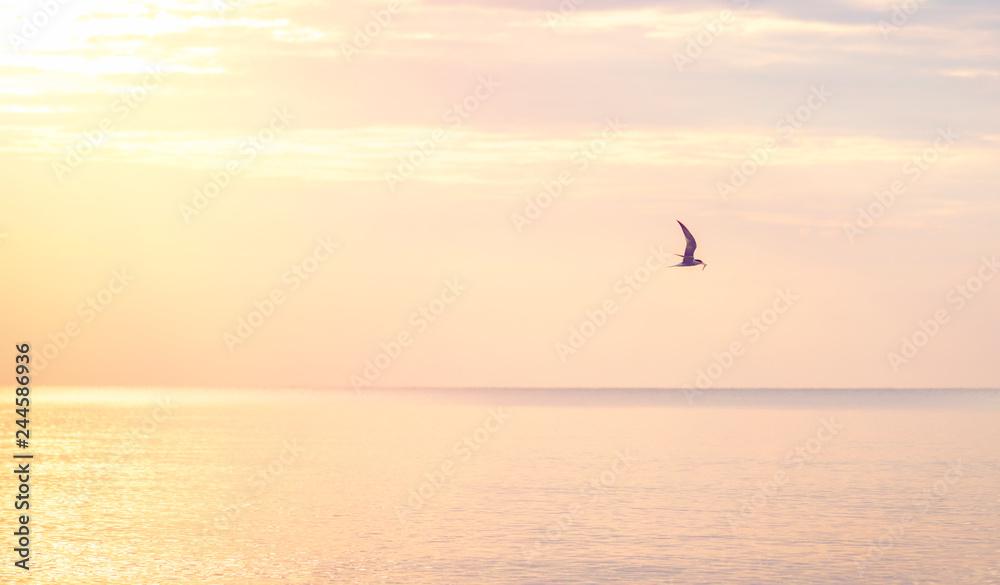 Beautifull sunrise at black sea