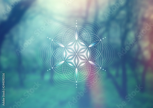Foto Vector template; Spiritual sacred geometry; Abstract geometric shape based on ancient symbol - flower of life on psychedelic natural photographic background; Yoga, meditation and relax
