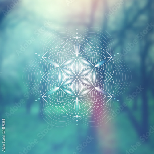 Fotografia  Vector template; Spiritual sacred geometry; Abstract geometric shape based on ancient symbol - flower of life on psychedelic natural photographic background; Yoga, meditation and relax