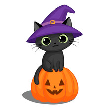 Black Cat In A Witch Hat On A ...