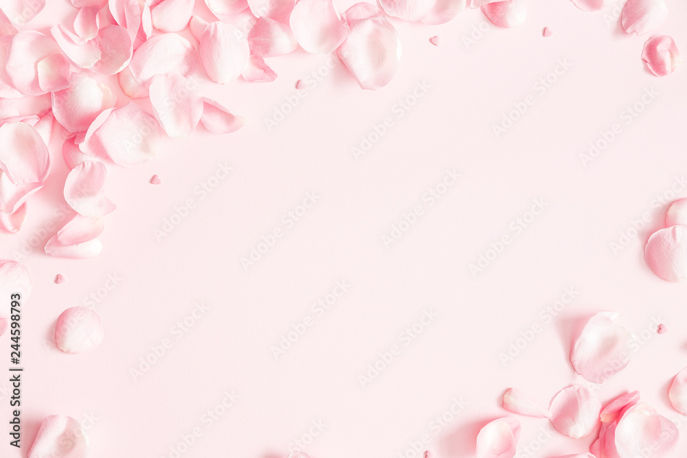 Fototapeta Flowers composition. Rose flower petals on pastel pink background. Valentines day, mothers day, womens day concept. Flat lay, top view, copy space
