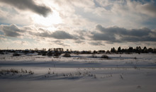 Winter Picture. Lot Of Snow An...