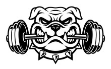 Black And White Illustration Of A Bulldog With Dumbbell