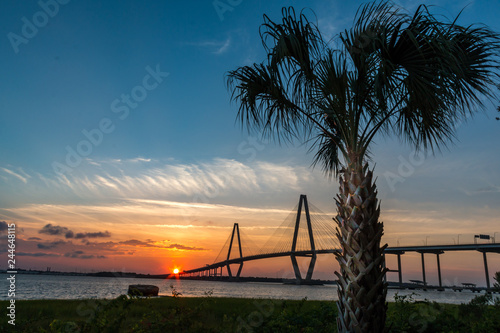 Fotografiet cable bridge with sunset and palmetto tree