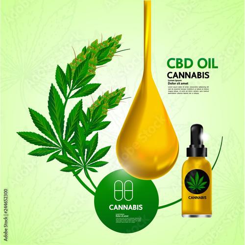 Photo  Cannabis for medical vector.