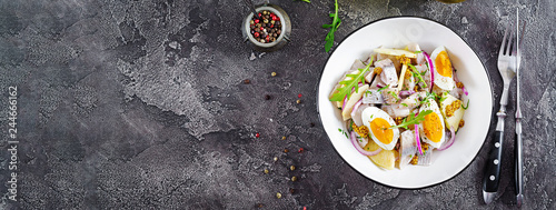Traditional  salad of salted herring fillet, fresh apples,  red onion  and eggs. Kosher food. Scandinavian cuisine. Top view. Flat lay. Banner. - 244666162