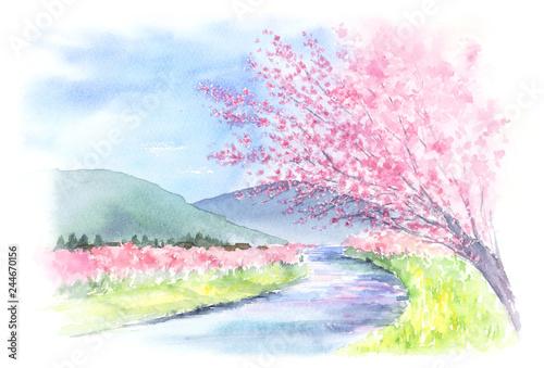 山と川と桜の木がある景色 水彩画