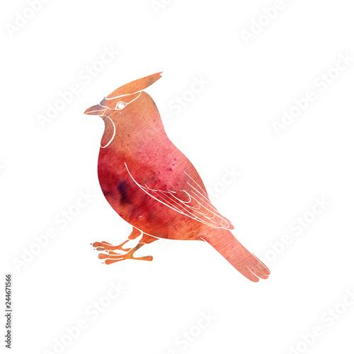 Fotomural watercolor silhouette of bird