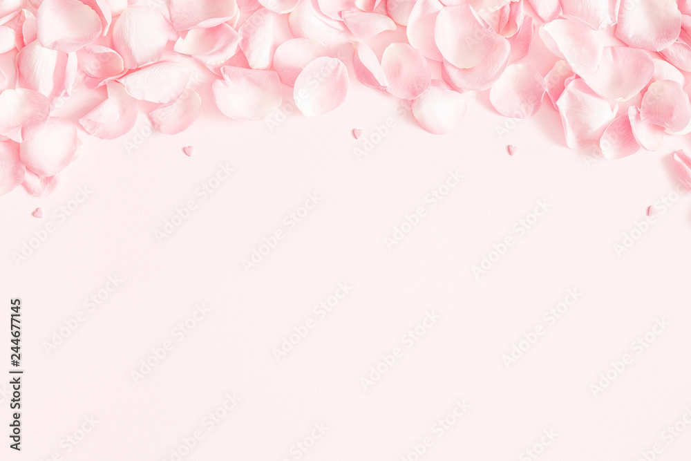 Fototapeta Flowers composition. Rose flower petals on pastel pink background. Valentine's Day, Mother's Day concept. Flat lay, top view, copy space