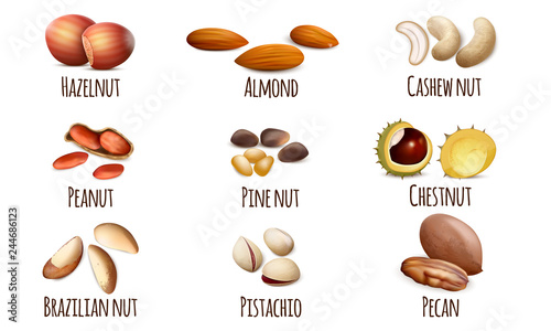 Obraz Nut icons set. Realistic set of nut vector icons for web design isolated on white background - fototapety do salonu