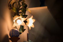 Vintage Style Lamps With Flowe...