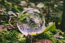 Crystal Photography Ball In Woodland Setting  - Refraction Photography