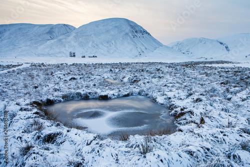 Fotografiet Findhorn valley in Scotland