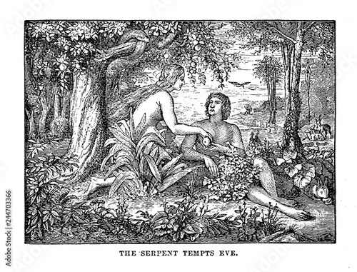 Adam & Eve Wallpaper Mural
