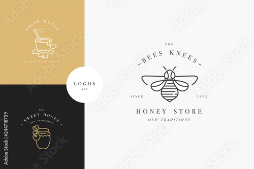 Vector set illustartion logos and design templates or badges Fototapet