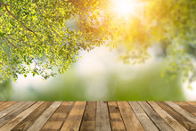Wood Table On Bokey  Green Nature Background