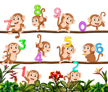 Let's Count With Monkey