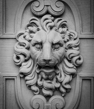 Lion Head, Decorative Element ...