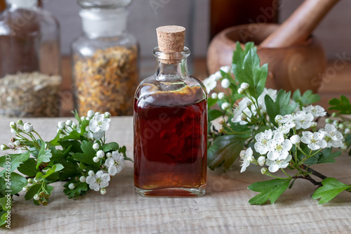 Carta da parati A bottle of hawthorn tincture with fresh blooming hawthorn branches