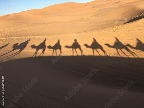Staande foto Marokko Kamelritt