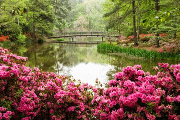 Cvjetnjak Azaleje s jezerom i pješačkim mostom