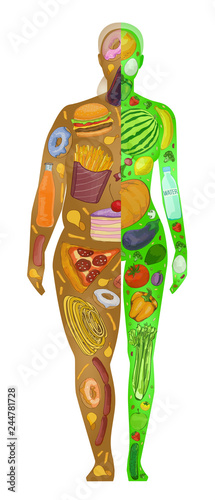 Diet, fat and thin woman, vector illustration Canvas Print