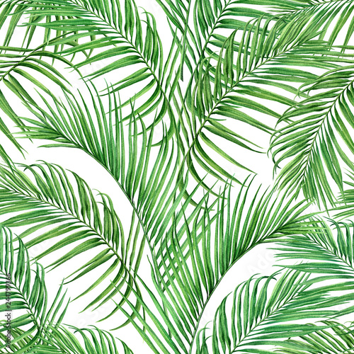 Ingelijste posters Tropische Bladeren Watercolor painting coconut,palm leaf,green leave seamless pattern isolated on white background.Watercolor hand drawn illustration tropical exotic leaf for wallpaper vintage Hawaii jungle style patter