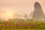 Typical landscape in Yangshuo Guilin, China - 244806971