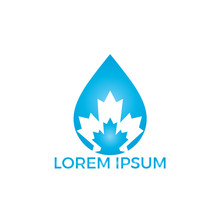 Water Drop And Maple Leaf Logo Design. Built In Water Drop Maple Leaf Icon Design Template.