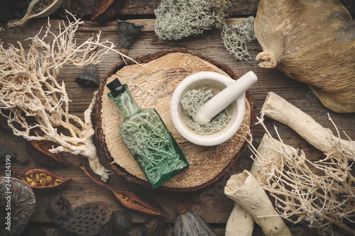 Photo  Bottle of infusion and mortar full of moss on wooden stump, nut shell, dry plants, eucalyptus and lotus seeds