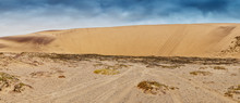 Panoramic Photograph Of Dune W...