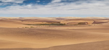 Photograph Of Dunes With Vegetation Of The Namibe Desert. Africa. Angola
