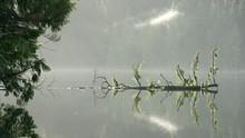 Sasamat Lake, British Columbia...