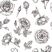 Roses Seamless Pattern. Hand Drawn Rose Floral Textere. Flower Fabric Repeat Vector Vintage Background. Rose With Petal Sketch Illustration