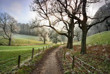 Walking Path Leading Into Beautiful Rural Landscape In Winter