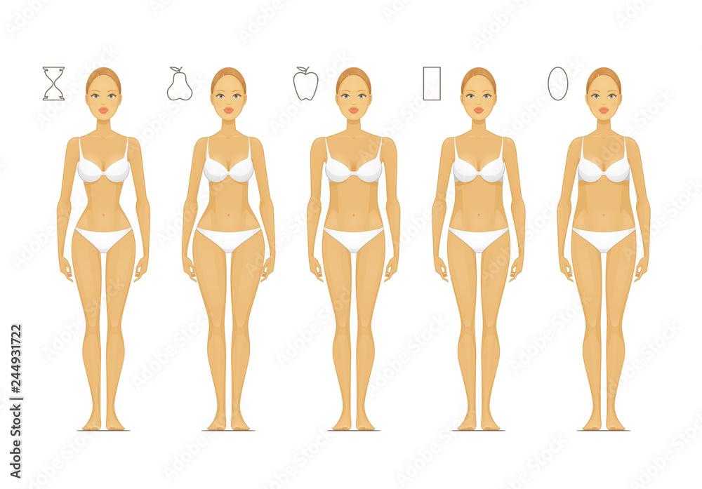 Fototapeta Female Body Shapes