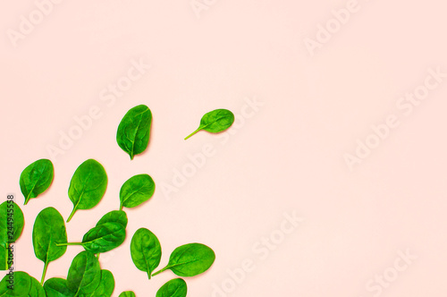 Fresh green spinach leaves on pink background Flat lay top view copy space. Creative food concept. Ingredient for salad. Vegetable design. Healthy lifestyle.