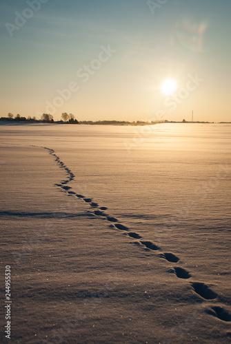 Foto auf Gartenposter Nordlicht Footprints, road in the frozen snow field