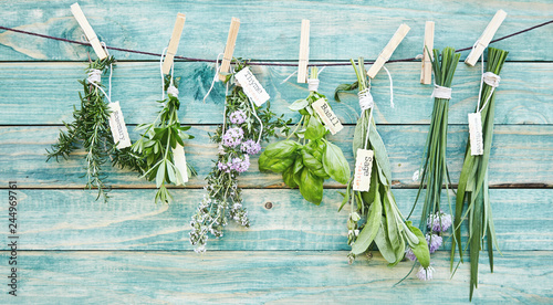 Fototapeta Bunches of assorted fresh green culinary herbs obraz
